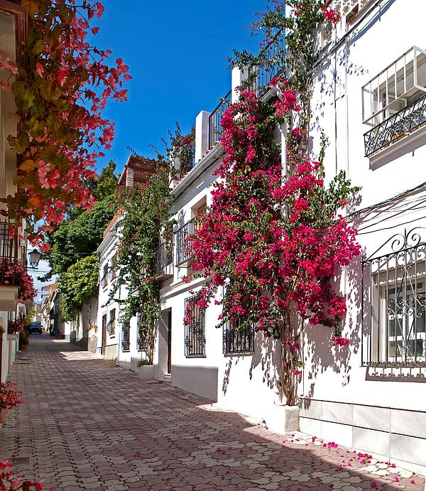 Marbella & tapas